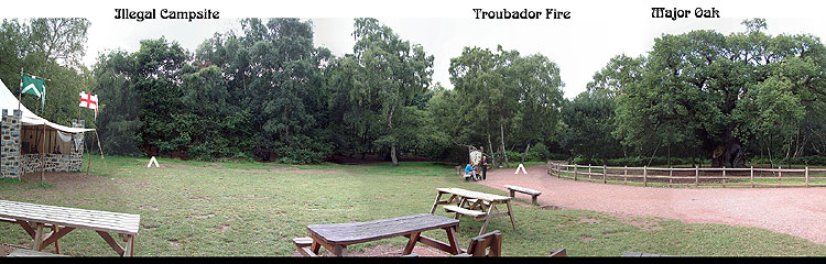 Panoramic Image Major Oak